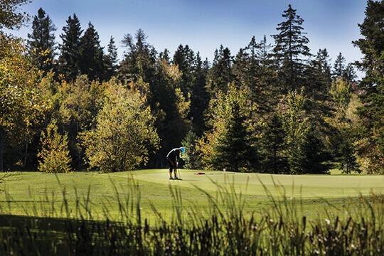 Northumberland Golf Getaways